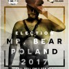 Wybory Mr. Bear 2017